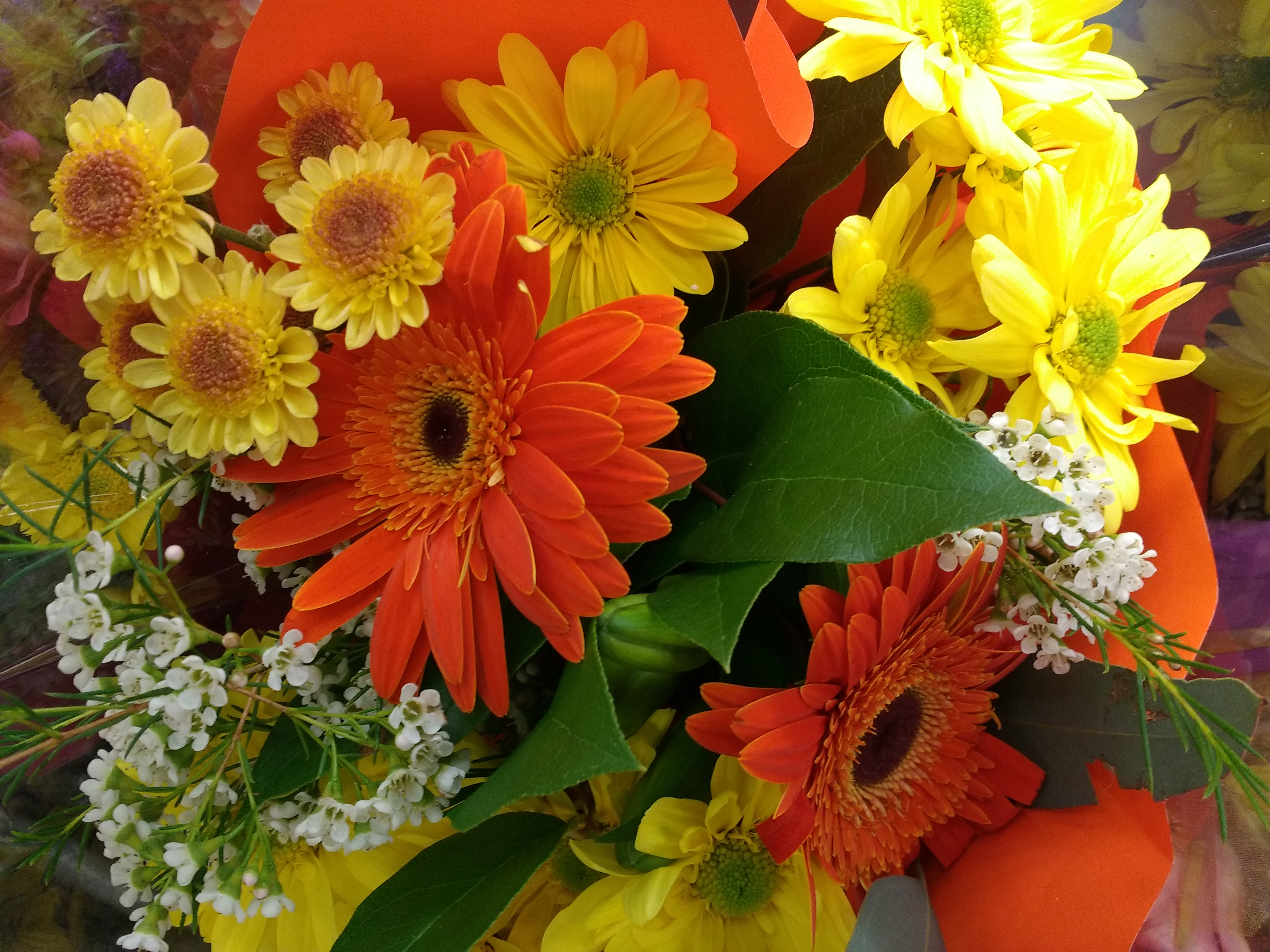 Orange and Yellow Flowers Bouquet Close Up Picture | Free Photograph ...
