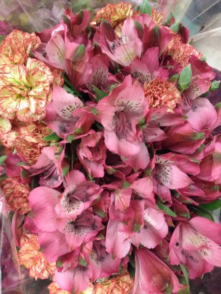 Pink Alstroemeria and Carnations Bouquet Closeup - Free High Resolution Photo