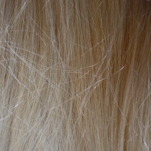 Blonde Hair Texture - Free High Resolution Photo