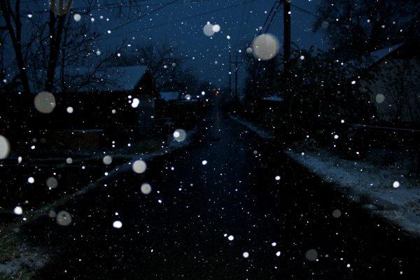 Snow Falling at Night - Free High Resolution Photo