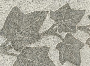 Textured Leaves Carved in Granite - Free High Resolution Photo