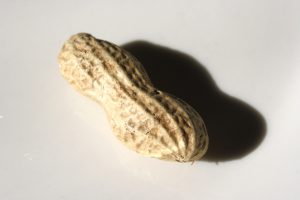 Peanut in the Shell - Free High Resolution Photo
