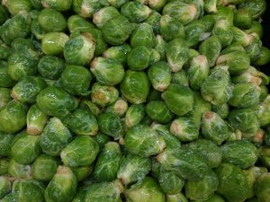 Brussels Sprouts - Free High Resolution Photo