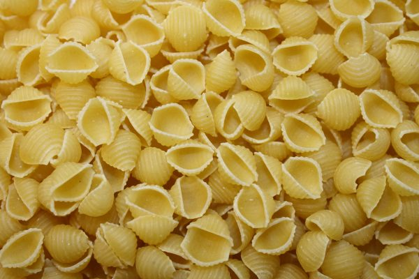 Pasta Shells - Free High Resolution Photo