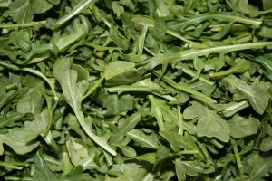 Arugula - Free High Resolution Photo