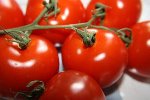Vine Ripened Tomatoes - Free High Resolution Photo