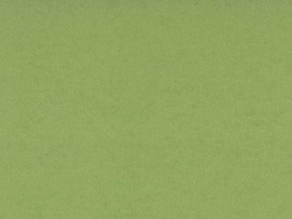Pea Green Card Stock Paper Texture - Free High Resolution Photo