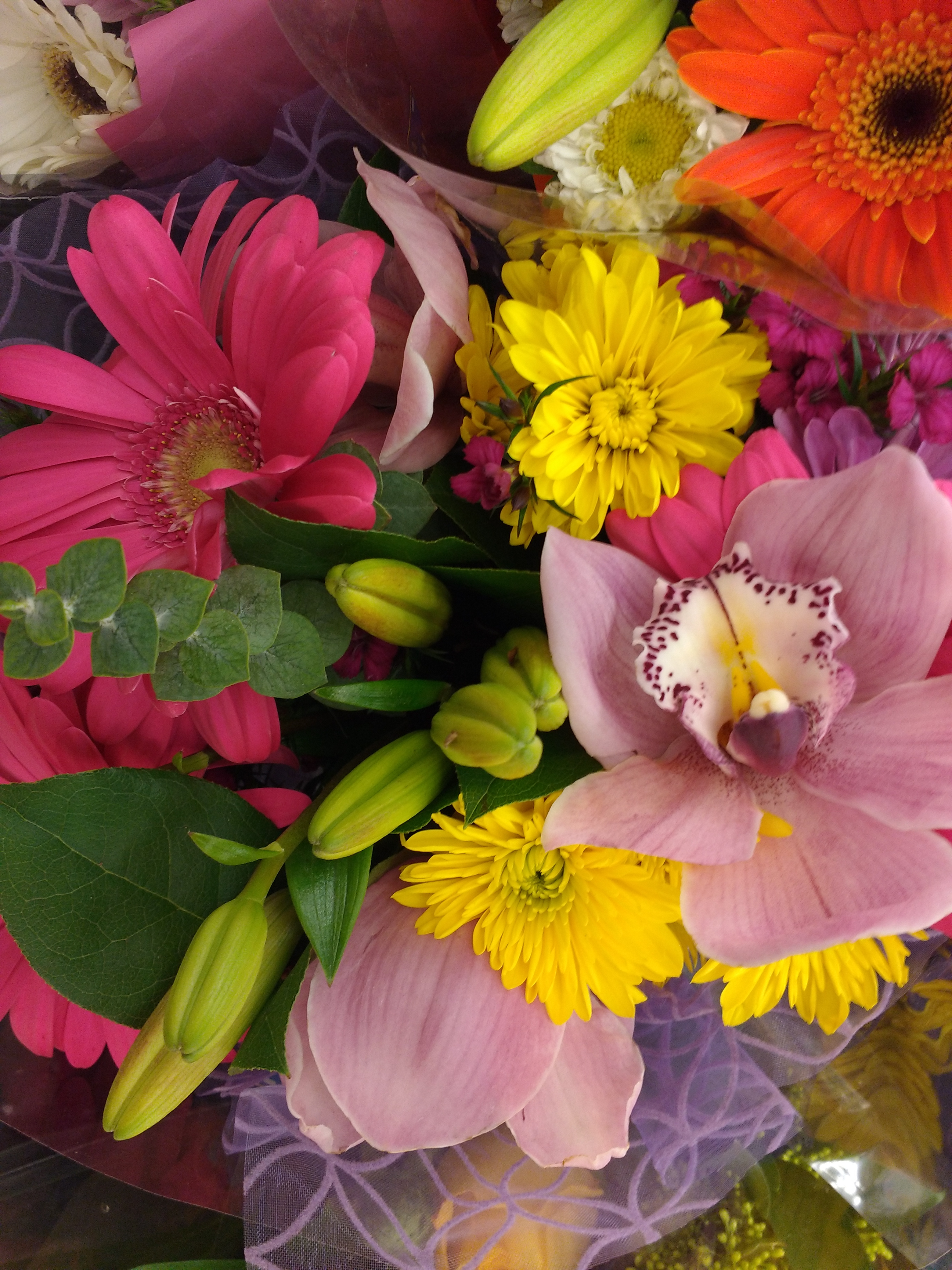 Bouquet Of Colorful Flowers Picture Free Photograph Photos