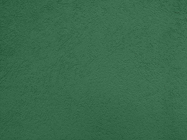 Green Textured Wall Close Up - Free High Resolution Photo