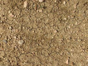 Dry Dirt Texture - Free High Resolution Photo