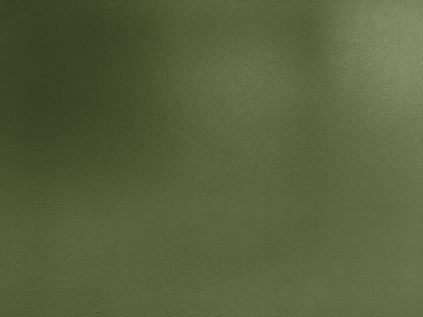Army Green Faux Leather Texture - Free High Resolution Photo