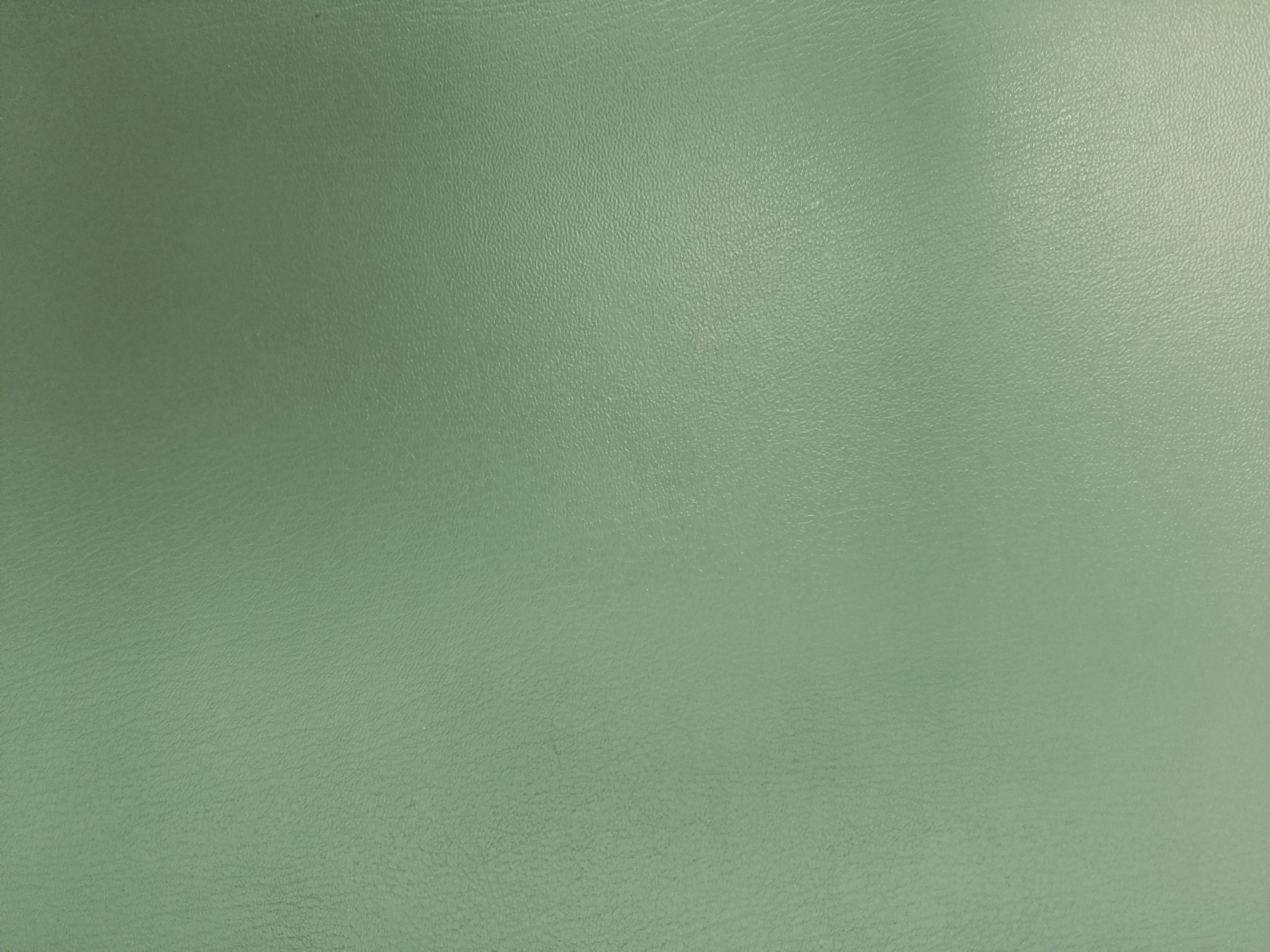 Sage Green Faux Leather Texture Picture Free Photograph