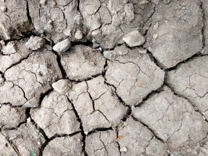 Dry Mud Close Up - Free High Resolution Photo