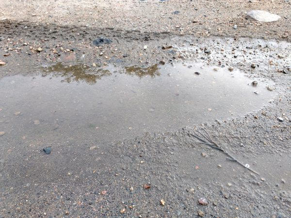 Mud Puddle - Free High Resolution Photo
