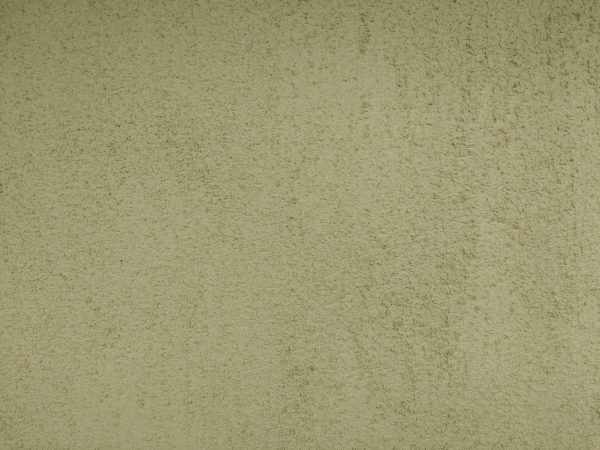 Olive Green Stucco Texture - Free High Resolution Photo