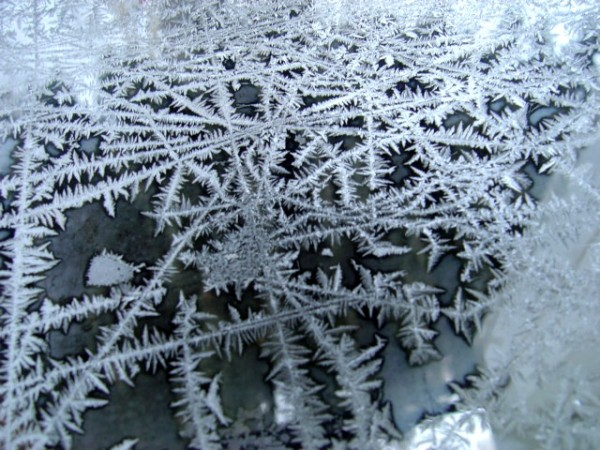 Ice Crystals on Glass - free photo