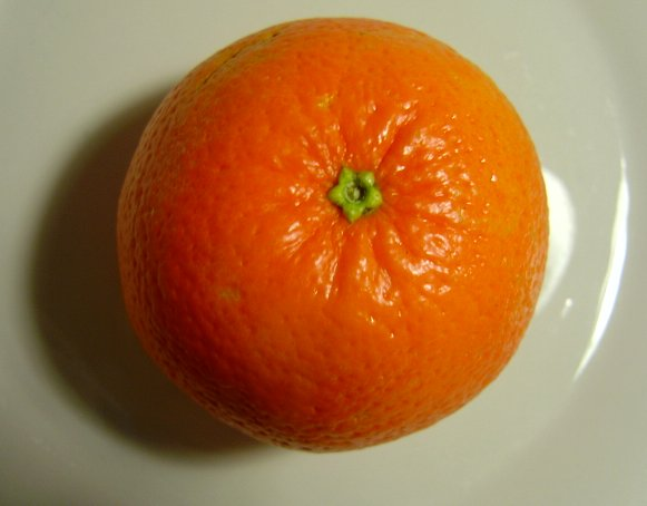 Photo of the top of an orange