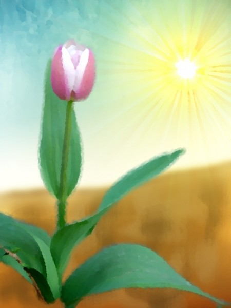 Watercolor painting of a tulip with sun in the background