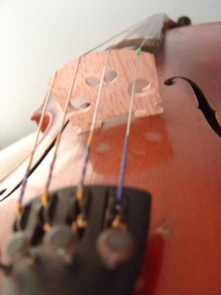 close up photo of a violin bridge