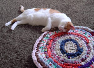 photo of a cute orange cat cuddling on a rag rug
