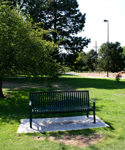 Free photo of a park bench in the shade of a tree