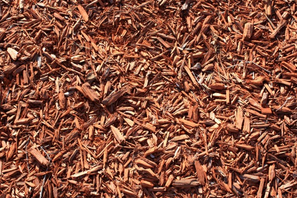 Free photo of red wood chips groundcover mulch