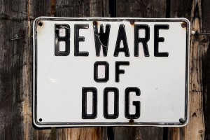 Free photo of beware of dog sign