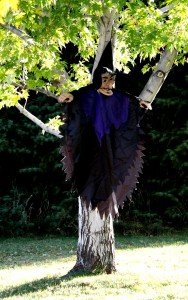 Free photo of Halloween witch yard decoration hanging in a tree