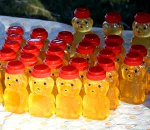 Free photo of rows of honey in bear jars in the sun
