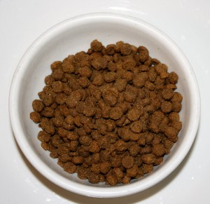 Bowl of Dry Cat Food - free high resolution photo