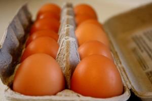 Brown Eggs - Free high resolution photo