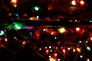 Christmas lights on chain link fence - free high resolution photo