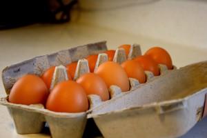 Dozen Eggs - free high resolution photo