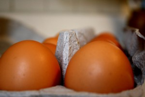 Eggs Closeup - free high resolution photo