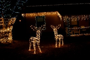 house with Christmas icicle and reindeer lights - free high resolution photo
