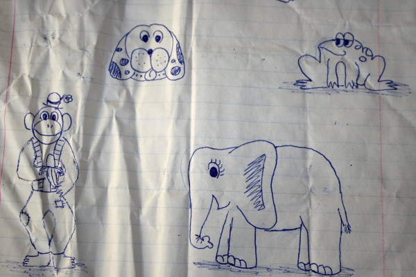 Animal Doodles on Crumpled Notebook Paper - Free High Resolution Photo