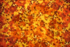 Orange Floral Carpet Texture - Free High Resolution Photo