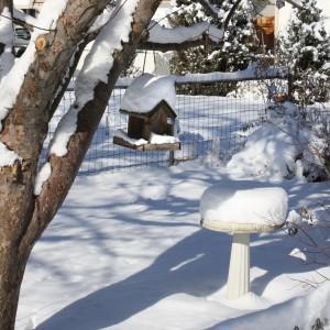 Snow Covered Bird Feeder and Birdbath - Free High Resolution Photo