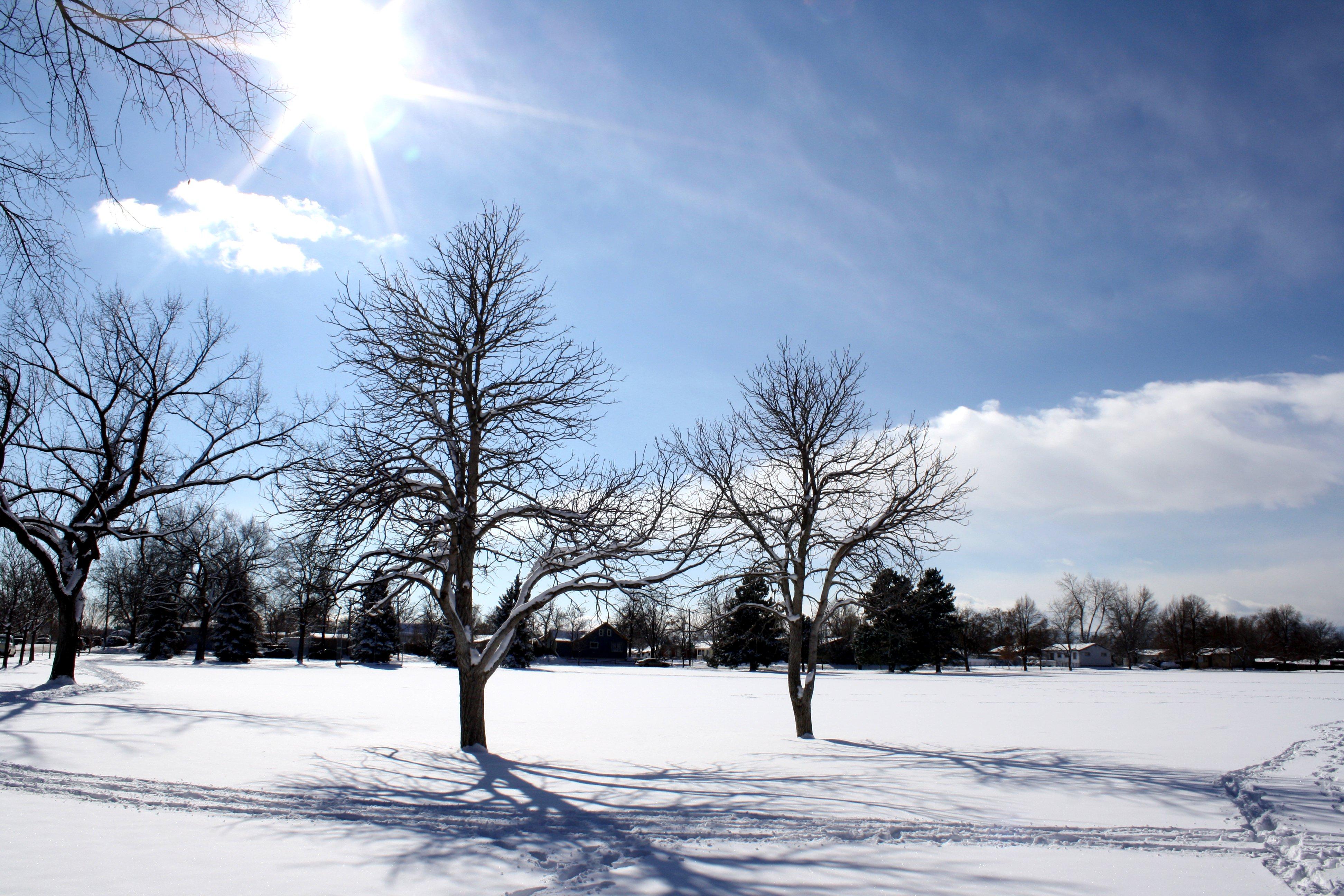 Sunny Winter Day Picture Free Graph Public