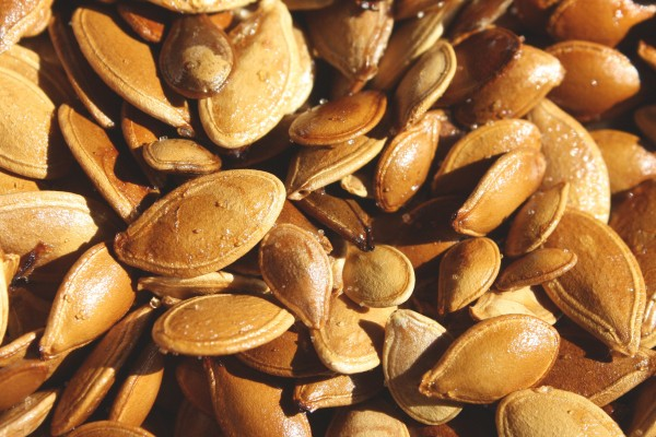 Toasted Pumpkin Seeds Texture - Free High Resolution Photo