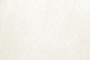White Parchment Paper Texture - Free High Resolution Photo