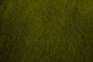 Olive Green Parchment Paper Texture - Free High Resolution Photo
