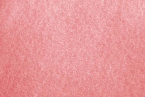 Red Parchment Paper Texture - Free High Resolution Photo