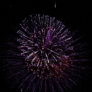 Purple Fireworks Starburst - Free High Resolution Photo
