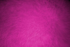 Hot Pink Fur Texture - Free High Resolution Photo