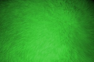 Neon Green Fur Texture - Free High Resolution Photo