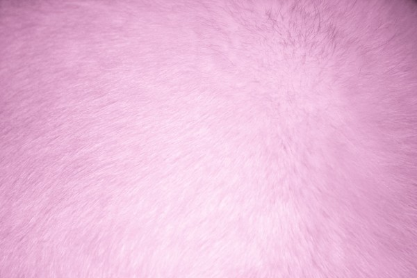 Pink Fur Texture - Free High Resolution Photo