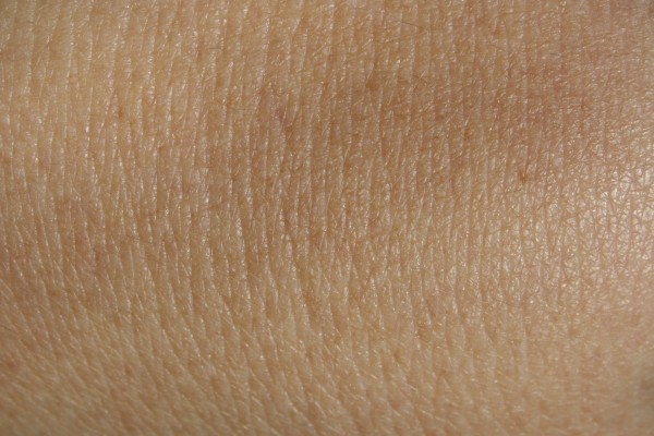 Skin - Free high resolution photo of human skin