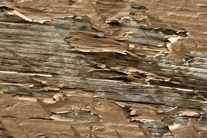 Peeling Brown Paint Texture - Free High Resolution Photo