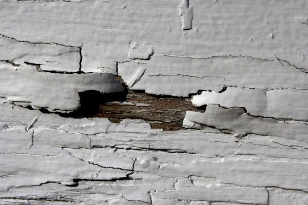 White Peeling Paint Texture - Free High Resolution photo